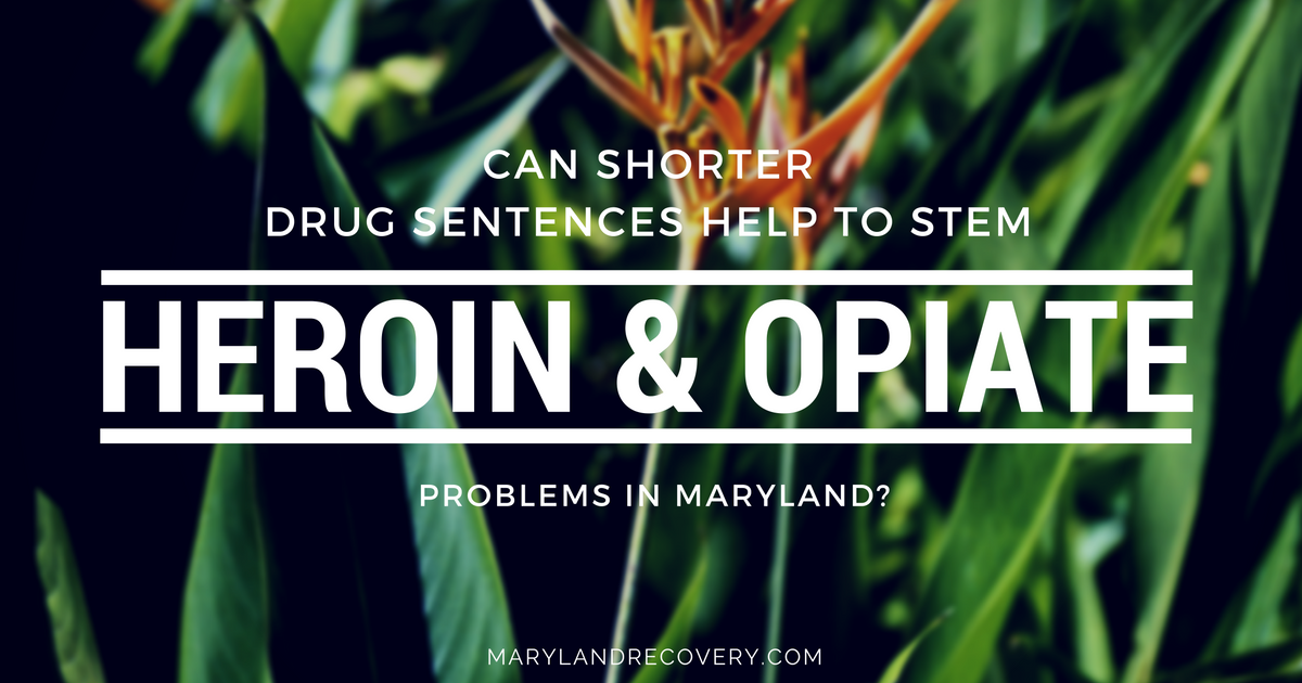 Can Shorter Drug Sentences Help To Stem Heroin And Opiate Problems In Maryland?